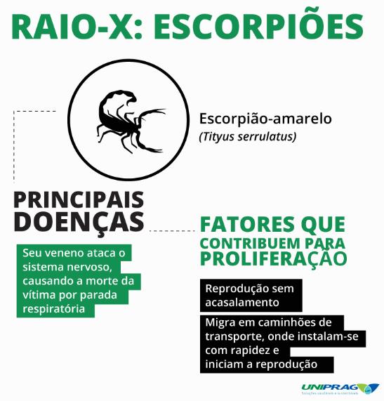 Escorpiões - Dedetização de Escorpiões Rio de Janeiro